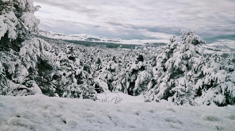 hiver-love