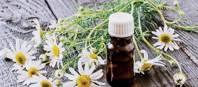 huile-essentielle-camomille